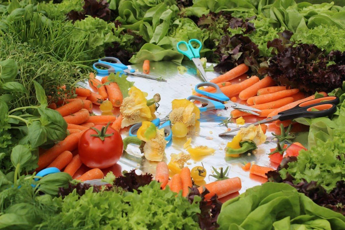 De Saladetafel in Nut en Genoegen